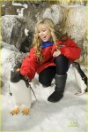 Jennette-jennette-mccurdy-4453905-815-1222